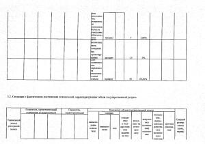 Отчет за 2017 год_page-0003