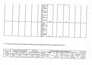 Отчет за 2017 год_page-0013