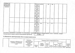 Отчет за 2017 год_page-0018