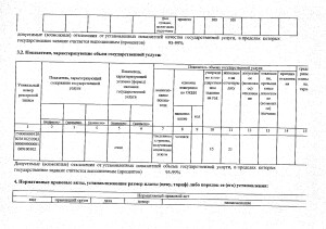 Отчет за 2017 год_page-0021