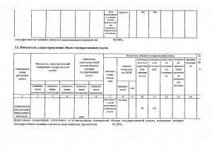 Отчет за 2017 год_page-0025