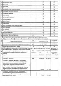 Отчет за 2017 г_page-0011